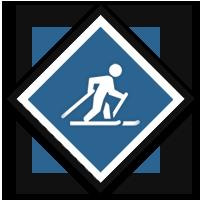 Contest_nordicskiing